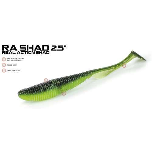 Molix RA SHAD 2.5